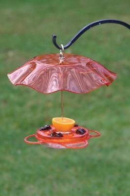 Birds Choice NP1012 Translucent 12 oz. Oriolefest Feeder w/Weather Guard