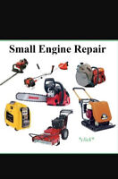 Small Engine Repair (Will Do House/Service Calls)