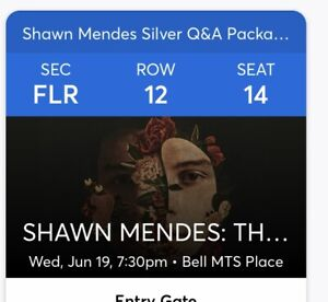 Shawn Mendes Silver Q&A Package