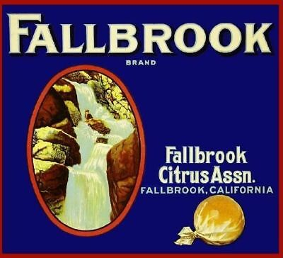 Fallbrook Collectibles