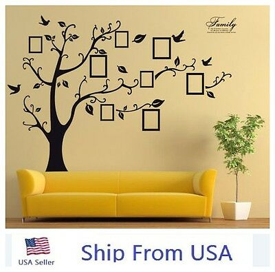 Family Tree Wall Decal Sticker Removable Picture Frame Photo Home Room Art Decor