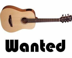 WANTED! Used/Damaged Guitars