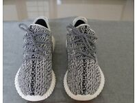 Adidas Yeezy 350 Boost Turtle Dive new with Box