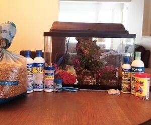 10 Gallon fish tank with filter system
