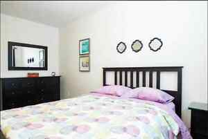 Short term rental, one night min Edmonton Edmonton Area image 5