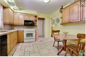 Wood Kitchen cabinets! (also selling microwave and stove)