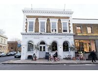 Artist needed for Filmed Burlesque & Life Drawing class from 2-5pm & Diner later on 15th Nov.