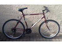 "Bike/Bicycle. GENTS UNIVERSAL "" SIERRA NEVADA "" MOUNTAIN BIKE"