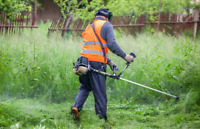 Fall Clean up and landscape services.