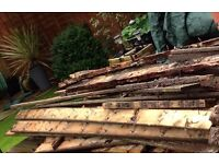 Free Firewood (used decking) collection only