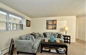 Two Bedroom: Fully renovated, near Wortley Village and Downtown London Ontario image 6