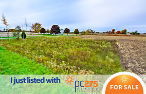 18487 Raglan Road – For Sale by PC275 Realty London Ontario image 1