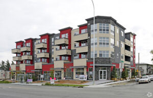 Invest in Multi-Family units that produce positive CASH-FLOW