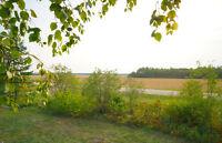 Beautifully treed acres, 5 minutes west of Lac du Bonnet