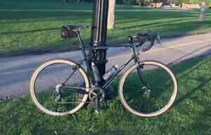 Help! Two Stolen Road Bikes: Custom built and Painted Frames