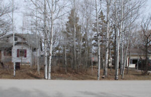 Lot for Sale Town of Stonewall