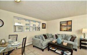 Renovated 1 Bedroom on Grand Ave in Wortley Village - Updated!