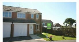 3 bedroom good size semi detached house with a good sized garden amd a garage