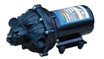 Everflo Ef4000 12-volt Diaphragm Pump