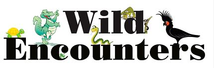 Reptile Parties & Shows (Wild Encounters)