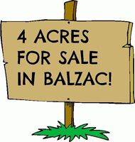 BALZAC ACREAGE FOR SALE BY OWNER! 2 STORY HOME