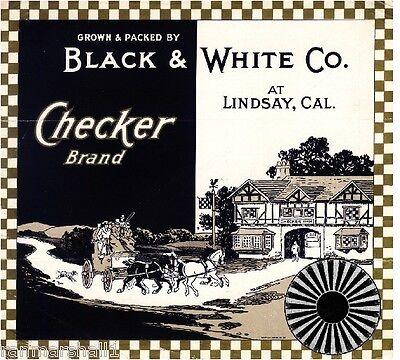 Lindsay Black and White Co. Checker Orange Citrus Fruit Crate Label Print, used for sale  La Verne