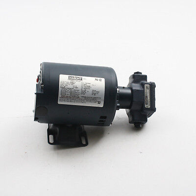 New Haight Hot Oil Pumpmotor 5-gpm Fits Broaster Oem-part10800 Ships Today