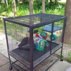 Large, Two Level Cage