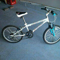 Nakamura bicycle for girl (7-10 years old)