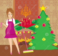 Do you need Christmas Cleaning done???