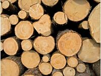 ** Logs wanted** Any sizes Cutting down a tree ? Tree Surgeons, get in touch.