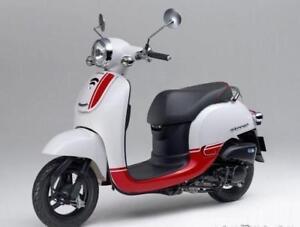 Honda Giorno 2013 - Très bonne condition
