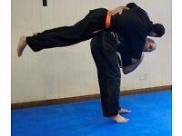 Jiu Jutsu classes