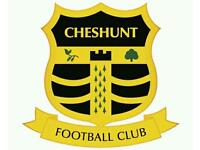 Cheshunt football club trials for u12s goalkeeper