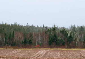40 Acres of Land for Sale in Kings Country, Prince Edward Island