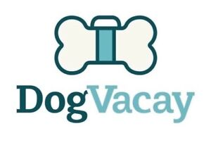 Dog sitter/ boarding - a loving caregiver for your furry friend