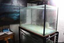 500 liter aquarium Toowong Brisbane North West Preview