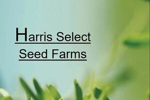 Certified Seed 2017