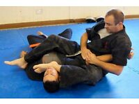 Jiu jutsu and karate classes