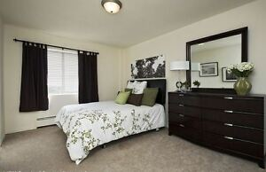 Renovated Two Bedroom for March - Great North London Location! London Ontario image 8