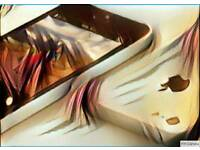 Apple i phone 5c