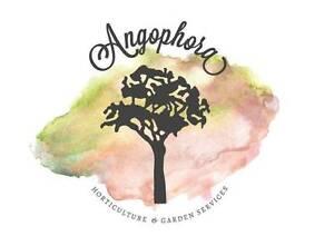 Angophora Horticulture & Garden Services Faulconbridge Blue Mountains Preview