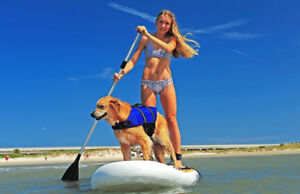 Paddle Board SUP Sale!!