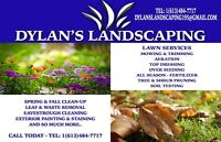 Fall cleanup and Lawn mowing