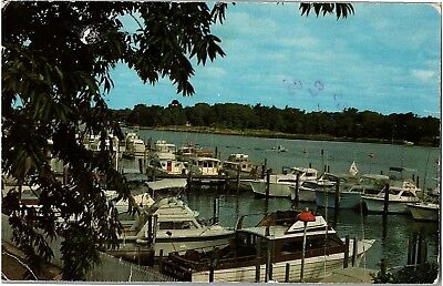 Postcard NJ Greetings From The Jersey Shore Marina Boats R1