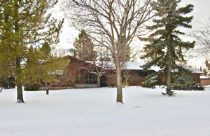 Acreage style living in town!!! Gorgeous bungalow in St. Paul AB