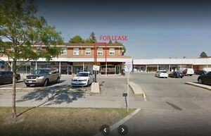 Office For Lease @ Brimley & Ellesmere