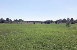 56 Acre Building Lot, 4.3 Km from the Quinte Mall - Now $199,900 Belleville Belleville Area image 1