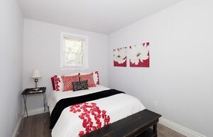 Fully Renovated with High End Touches! Kitchener / Waterloo Kitchener Area image 7