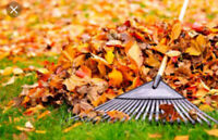 Westdale Lawn and Property service. NOW BOOKING FALL CLEAN-UPS.
